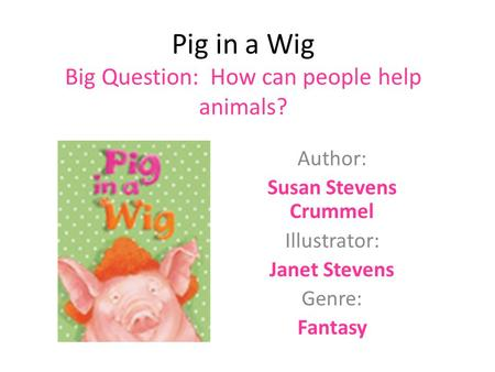 Pig in a Wig Big Question: How can people help animals?