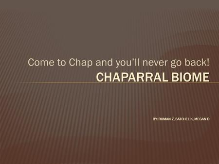 Come to Chap and you'll never go back! CHAPARRAL BIOME CHAPARRAL BIOME BY: ROMAN Z, SATCHEL K, MEGAN D.