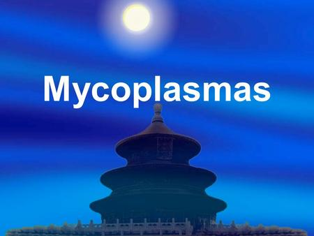 Mycoplasmas.  A group of the smallest organisms that can be free-living in nature,  Pass bacterial filter and also grow on laboratory media. More than.