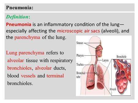 pneumonia dr. meg-angela christi amores. definition infection of, Human Body