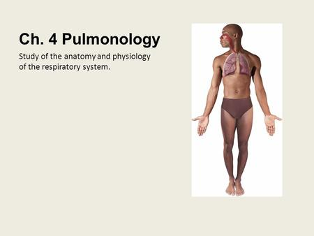 Ch. 4 Pulmonology Study of the anatomy and physiology of the respiratory system.
