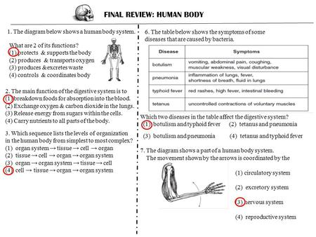 FINAL REVIEW: HUMAN BODY