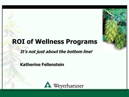 ROI of Wellness Programs It's not just about the bottom line! Katherine Fellenstein.