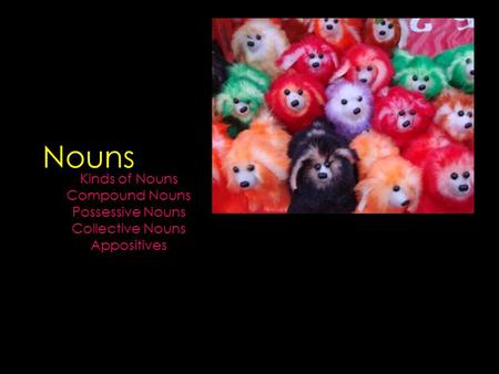 Nouns Kinds of Nouns Compound Nouns Possessive Nouns Collective Nouns Appositives.
