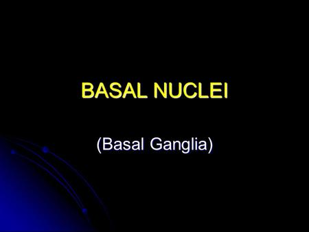 BASAL NUCLEI (Basal Ganglia). Basal Nuclei Components Substantia nigra (within the midbrain) Substantia nigra (within the midbrain) Subthalamic nuclei.