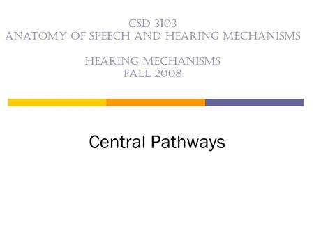 CSD 3103 anatomy of speech and hearing mechanisms Hearing mechanisms Fall 2008 Central Pathways.