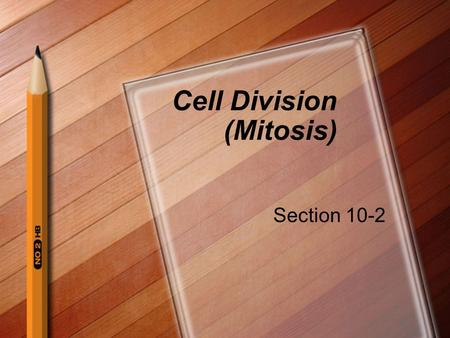 Cell Division (Mitosis) Section 10-2. Chromosomes In our cells the genetic information that is carried from one generation to the next is carried by chromosomes.