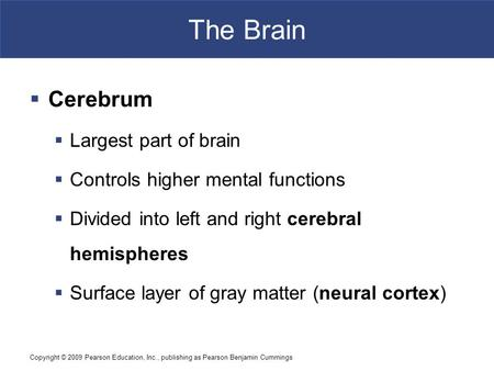 Copyright © 2009 Pearson Education, Inc., publishing as Pearson Benjamin Cummings The Brain  Cerebrum  Largest part of brain  Controls higher mental.