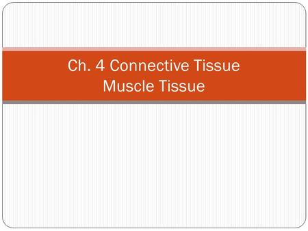 Ch. 4 Connective Tissue Muscle Tissue. Figure 4-18 Muscle Tissue Skeletal Muscle Tissue Cardiac Muscle Tissue Smooth Muscle Tissue Smooth muscle Cardiac.