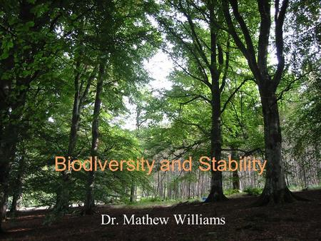 Biodiversity and Stability Dr. Mathew Williams. Complexity and stability Does a cellular process need all those processes? Must an organism have so many.
