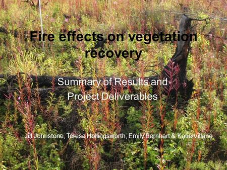 Fire effects on vegetation recovery Summary of Results and Project Deliverables Jill Johnstone, Teresa Hollingsworth, Emily Bernhart & Katie Villano.