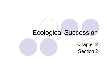 Ecological Succession Chapter 2 Section 2. Bell Work Imagine you have been hired to oversee the maintenance of a forest.  How would you evaluate the.