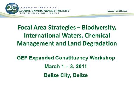 Focal Area Strategies – Biodiversity, International Waters, Chemical Management and Land Degradation GEF Expanded Constituency Workshop March 1 – 3, 2011.
