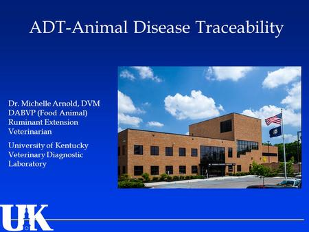 Dr. Michelle Arnold, DVM DABVP (Food Animal) Ruminant Extension Veterinarian University of Kentucky Veterinary Diagnostic Laboratory ADT-Animal Disease.