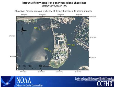 Impact of Hurricane Irene on Pivers Island Shorelines Carolyn Currin, NOAA NOS Objective: Provide data on resiliency of 'living shorelines' to storm impacts.