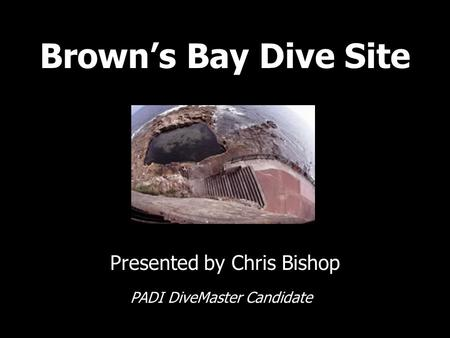 Brown's Bay Dive Site Presented by Chris Bishop PADI DiveMaster Candidate.