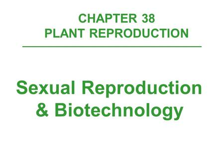 CHAPTER 38 PLANT REPRODUCTION Sexual Reproduction & Biotechnology