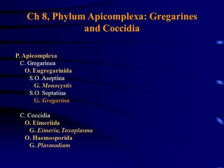 Ch 8, Phylum Apicomplexa: Gregarines and Coccidia
