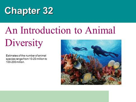 Chapter 32 An Introduction to Animal Diversity Estimates of the number of animal species range from 10-20 million to 100-200 million.