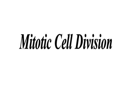 Mitotic Cell Division.