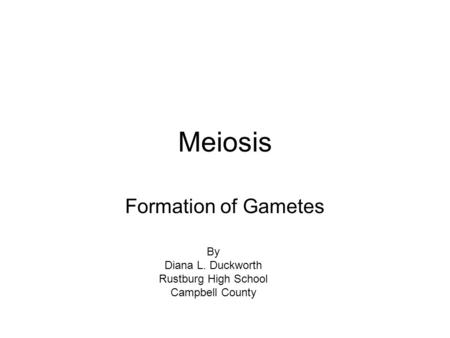 Meiosis Formation of Gametes By Diana L. Duckworth Rustburg High School Campbell County.