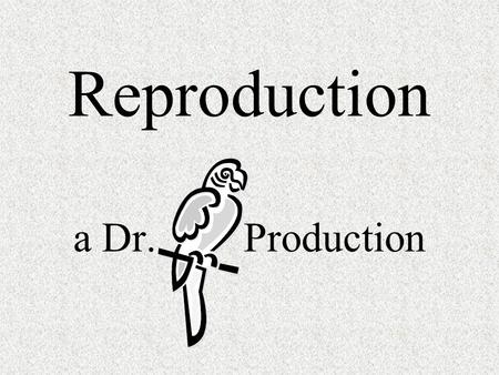 Reproduction a Dr. Production. Does a 5 year old boy have mitotic divisions occurring? Does a 5 year old boy have meiotic divisions occurring? Does a.
