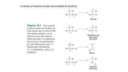 A variety of reaction modes are available to alcohols.
