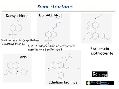 Some structures Dansyl chloride 1,5-I-AEDANS Fluorescein isothiocyante ANS Ethidium bromide 5-[2-[(2-iodoacetyl)amino]ethylamino] naphthalene-1-sulfonic.