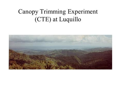 Canopy Trimming Experiment (CTE) at Luquillo. CTE Scientific Basis A result of the monitoring activities To simulate and increase the frequency of hurricanes.