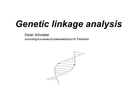 Genetic linkage analysis Dotan Schreiber According to a series of presentations by M. Fishelson.