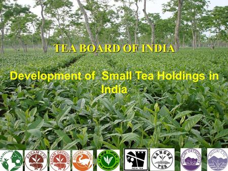 TEA BOARD OF INDIA Development of Small Tea Holdings in India.