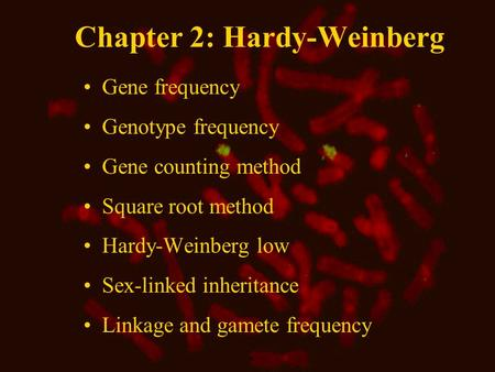 Chapter 2: Hardy-Weinberg Gene frequency Genotype frequency Gene counting method Square root method Hardy-Weinberg low Sex-linked inheritance Linkage and.