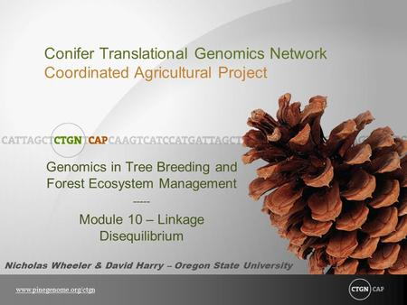 Genomics in Tree Breeding and Forest Ecosystem Management