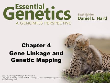 Chapter 4 Gene Linkage and Genetic Mapping