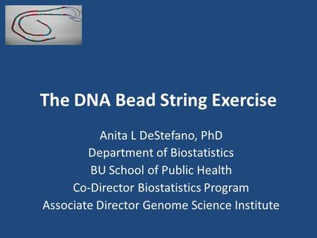 The DNA Bead String Exercise Anita L DeStefano, PhD Department of Biostatistics BU School of Public Health Co-Director Biostatistics Program Associate.
