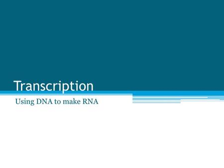 "Transcription Using DNA to make RNA. The ""Big Picture"" Goal Use DNA to make protein ▫Step 1: Replicate the DNA ▫Step 2: Transcribe DNA into RNA ▫Step."