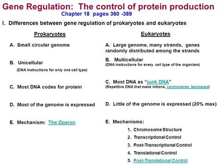 Gene Regulation: The control of protein production Prokaryotes Eukaryotes A. Small circular genome B.Unicellular (DNA instructions for only one cell type)