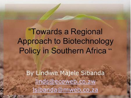 """Towards a Regional Approach to Biotechnology Policy in Southern Africa "" By Lindiwe Majele Sibanda"