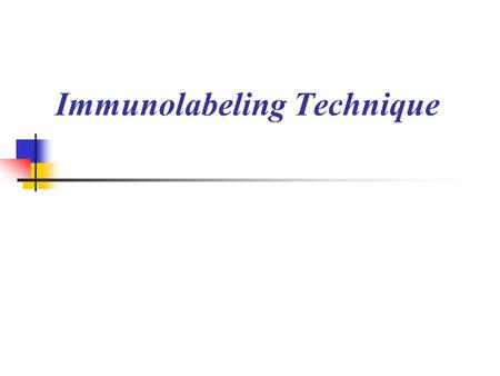 Immunolabeling Technique