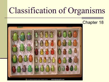Classification of Organisms Chapter 18 What is an Organism? An organism is generally referred to any living thing. More specifically any thing that has.