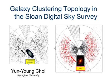 Galaxy Clustering Topology in the Sloan Digital Sky Survey Yun-Young Choi Kyunghee University.