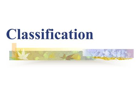 Classification Why Do Scientists Classify? KEY CONCEPT: Biologists use classification to organize living things into groups so that the organisms are.