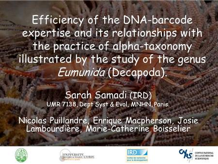 Efficiency of the DNA-barcode expertise and its relationships with the practice of alpha-taxonomy illustrated by the study of the genus Eumunida (Decapoda).