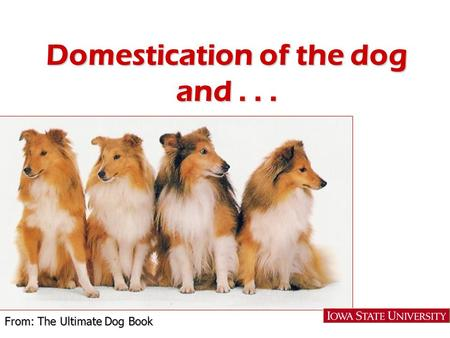 Domestication of the dog and... From: The Ultimate Dog Book.