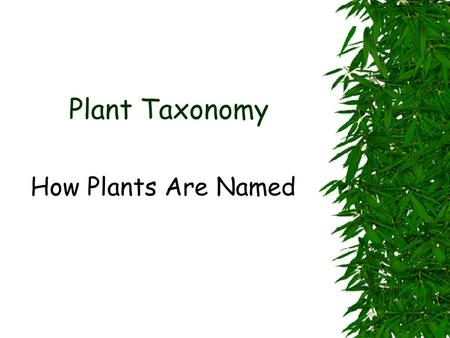 Plant Taxonomy How Plants Are Named.