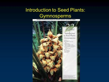 Introduction to Seed Plants: Gymnosperms. Outline Overview Phylum Pinophyta Phylum Ginkgophyta Phylum Cycadophyta Phylum Gnetophyta Human Relevance of.