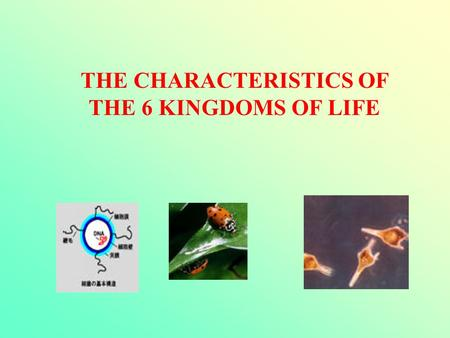 THE CHARACTERISTICS OF THE 6 KINGDOMS OF LIFE