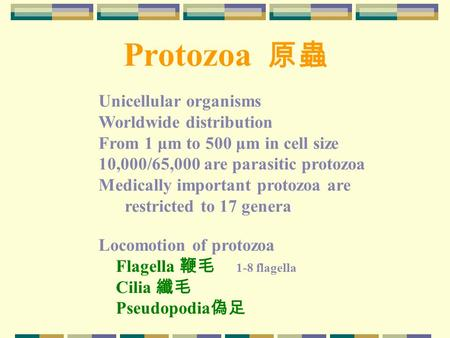 Protozoa 原蟲 Unicellular organisms Worldwide distribution From 1 μm to 500 μm in cell size 10,000/65,000 are parasitic protozoa Medically important protozoa.