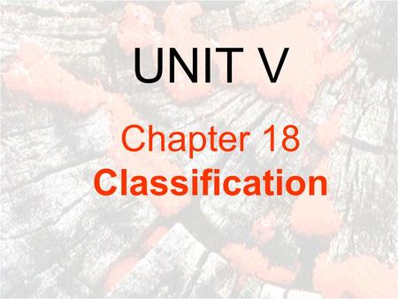 UNIT V Chapter 18 <strong>Classification</strong>.