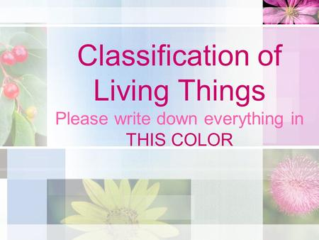 Classification of Living Things Please write down everything in THIS COLOR.